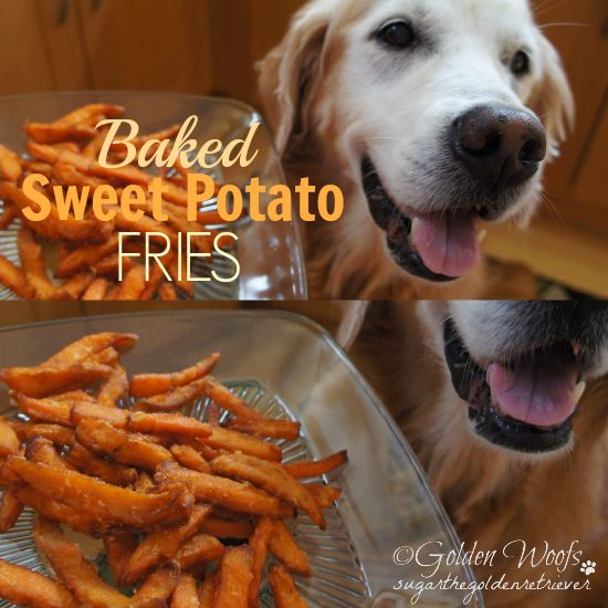 Sweet Benefits Of Sweet Potato For Dogs  Baked Sweet Potato Fries Ingredients: Sweet Potato, Coconut Oil, Tumeric (optional) Peel a sweet potato and cut into sticks. Coat the sweet potato sticks with coconut oil. Sprinkle some turmeric. Bake it for ~ 30 minutes at 350 (convection bake). For crispy fries, change bake to broil on last 5 minutes of cooking time.