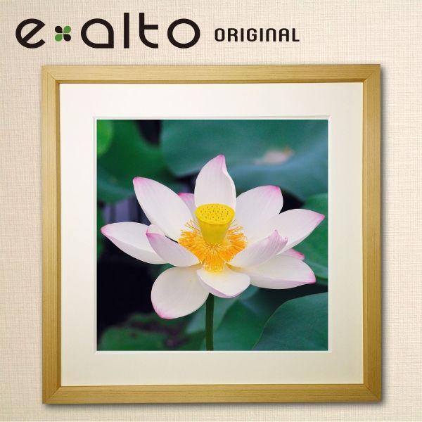 【楽天市場】壁掛けアート 額縁付アートパネル 美しい蓮/ハスの風景画/y2-hiro ジクレープリント額縁付き:e-alto(エアルト)