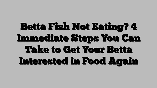 Betta Fish Not Eating? 4 Immediate Steps You Can Take to Get Your Betta Interested in Food Again  https://mangowall.com/betta-fish-not-eating-4-immediate-steps-you-can-take-to-get-your-betta-interested-in-food-again/