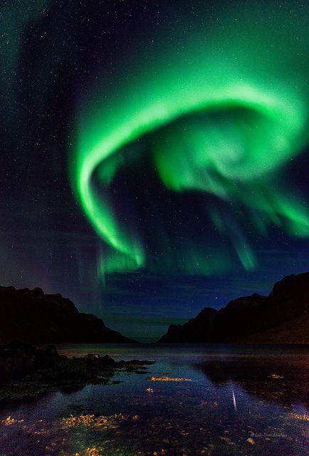 Ersfjorden 12.09.13. Bad prediction, good result!