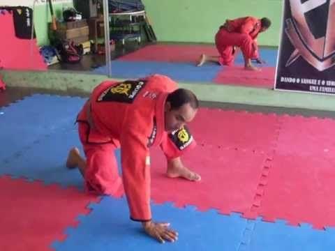 curso completo de jiu jitsu para faixa branca parte 1/35