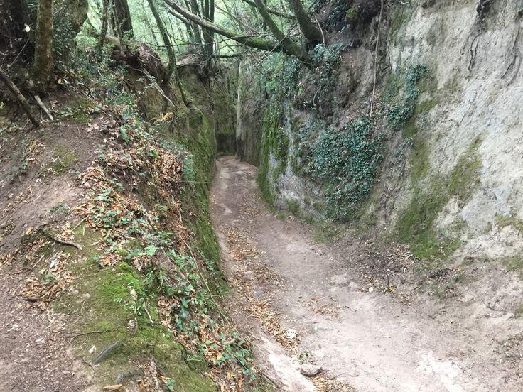 **Vie Cave Etrusche (Pitigliano, Italy): Top Tips Before You Go - TripAdvisor