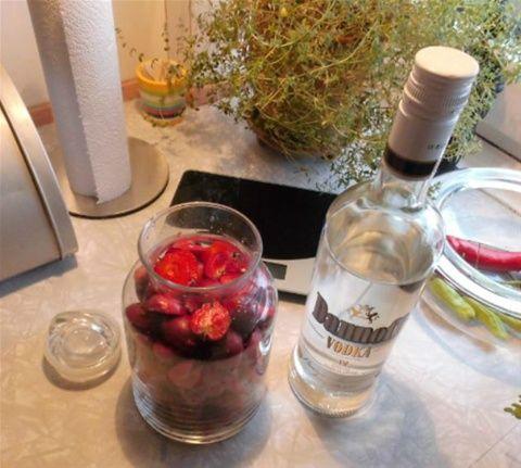 Ingredienser: 4 klementiner, 1 æble, 4 spsk akacie honning, 2 kanelstænger, 2 hele nelliker,  en lille håndfuld kaffebønner & 1 fl vodka. skyl klementinerne/æblet & prik huller i med en gaffel. start med at komme honning i glasset, tilsæt resten af blandingen & hæld vodka udover. lad snapsen t...