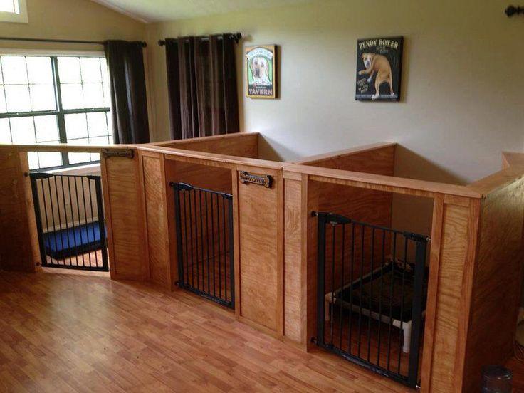 Barks & Recreation | Gatlinburg Dog Boarding | Gatlinburg Dog Day Care