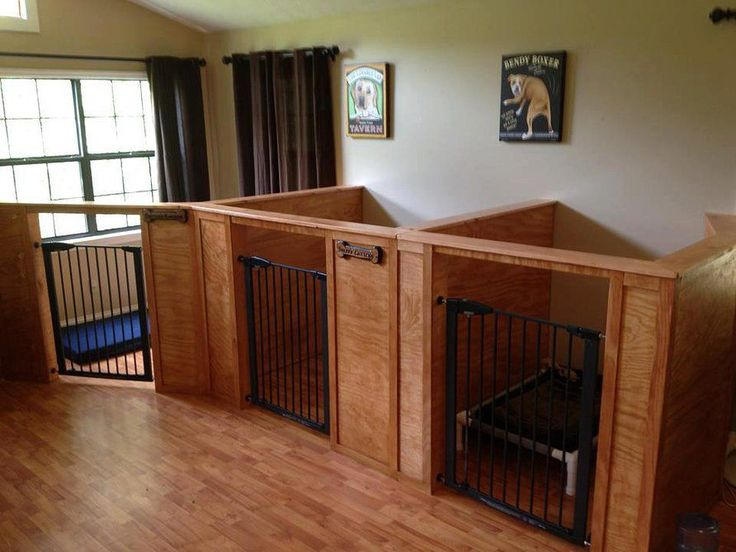 Barks recreation gatlinburg dog boarding gatlinburg for Dog boarding in homes
