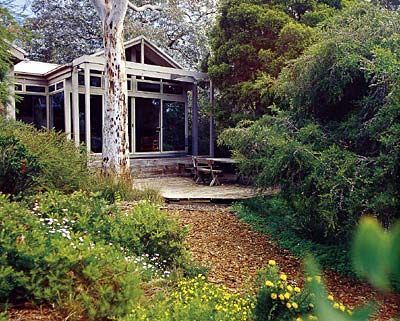 Garden Ideas Victoria Australia 90 best garden ideas images on pinterest | native gardens
