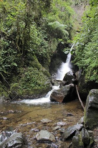 River Quindio