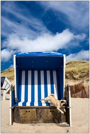 Strandkörbe  14 best Strandkörbe images on Pinterest | Beach tops, Beach chairs ...