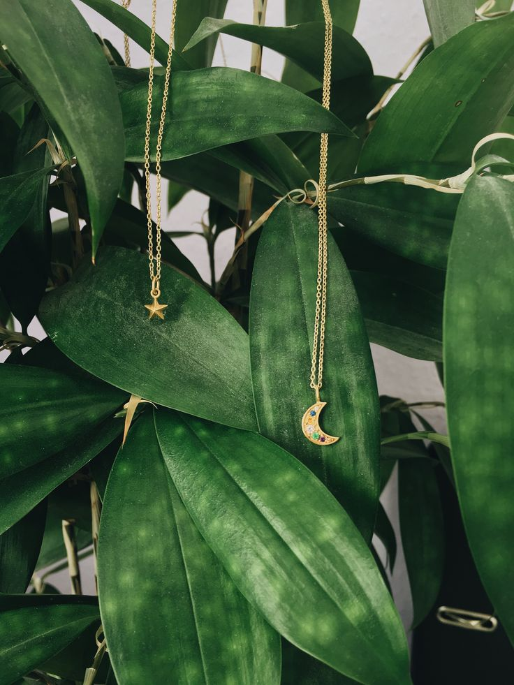 #hvisk #hviskstylist #stylist #hviskjewelry #jewelry #love #fashion #fash #fashionista #gold #moonlight #moon #zirconia #star #necklace