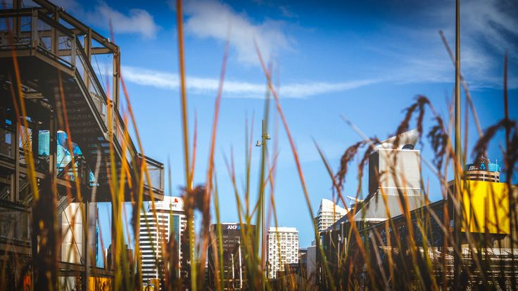 MorningDaily 143 | http://jhpv.co/1vG615U #Auckland, #DSLR, #MorningDaily, #NewZealand  See me - http://jhpv.co/JHPVSite Own me - http://jhpv.co/JHPVStore