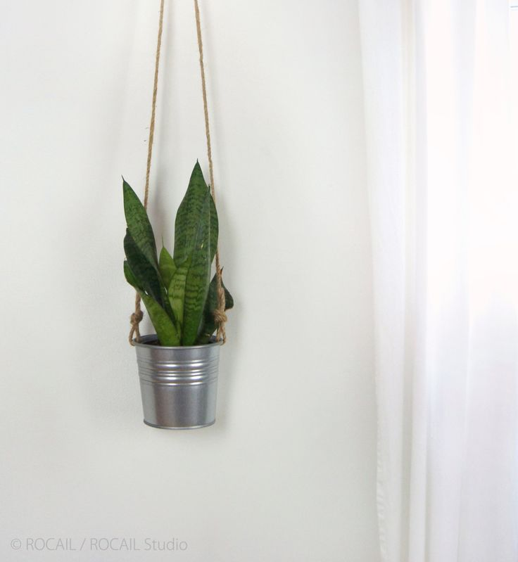 Hanging Planter in Natural Beige and Gray Galvanized Metal For Succulent | Plant Holder, Pot, Hanger | Modern Decor | Unique Gift Ideas by RocailStudio on Etsy