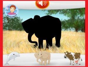 *▶ Zoek de goede schaduw van de dieren met kleuters op digibord of computer op kleuteridee.nl