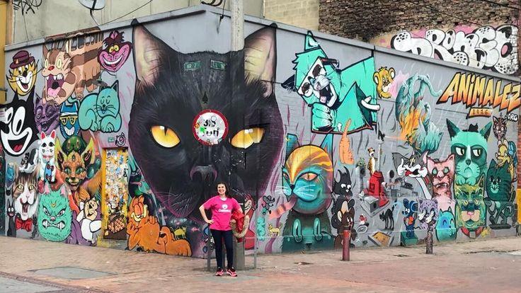 """Catland - Adoção de Gatinhos no Instagram: """"No centro de Bogotá - Colômbia, a parede mais maravilhosa do mundo! 😻💜 #catlandpelomundo 🌎 #bogota🇨🇴 #Colômbia #graffiti #catgraffiti…"""""""