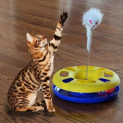 cool Funny Pet Cat Toy Moving Mouse Playing Ball Activity Disk Training Interesting - For Sale Check more at http://shipperscentral.com/wp/product/funny-pet-cat-toy-moving-mouse-playing-ball-activity-disk-training-interesting-for-sale-2/