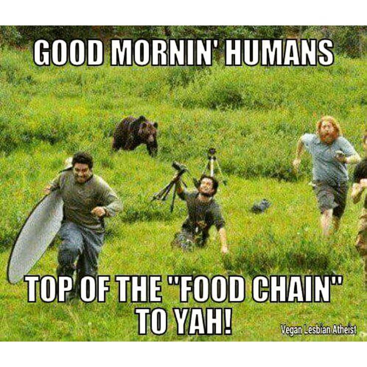 Funny Memes June : Best mama june images on pinterest funny