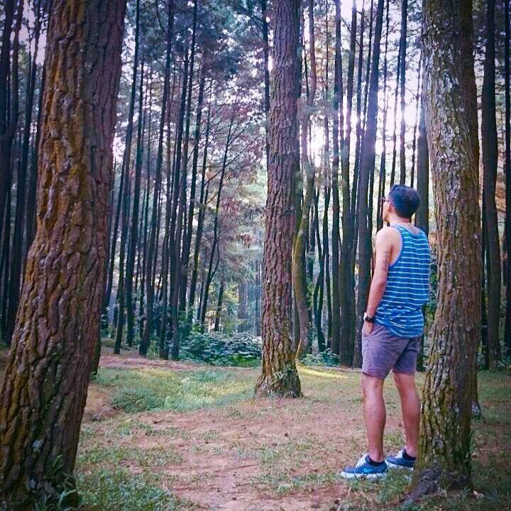 Mt. Pantjar, Sentul - Bogor