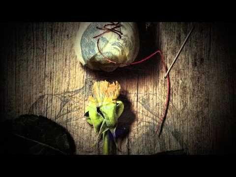 El secreto de Vesalio, nos trae un asesino en serie