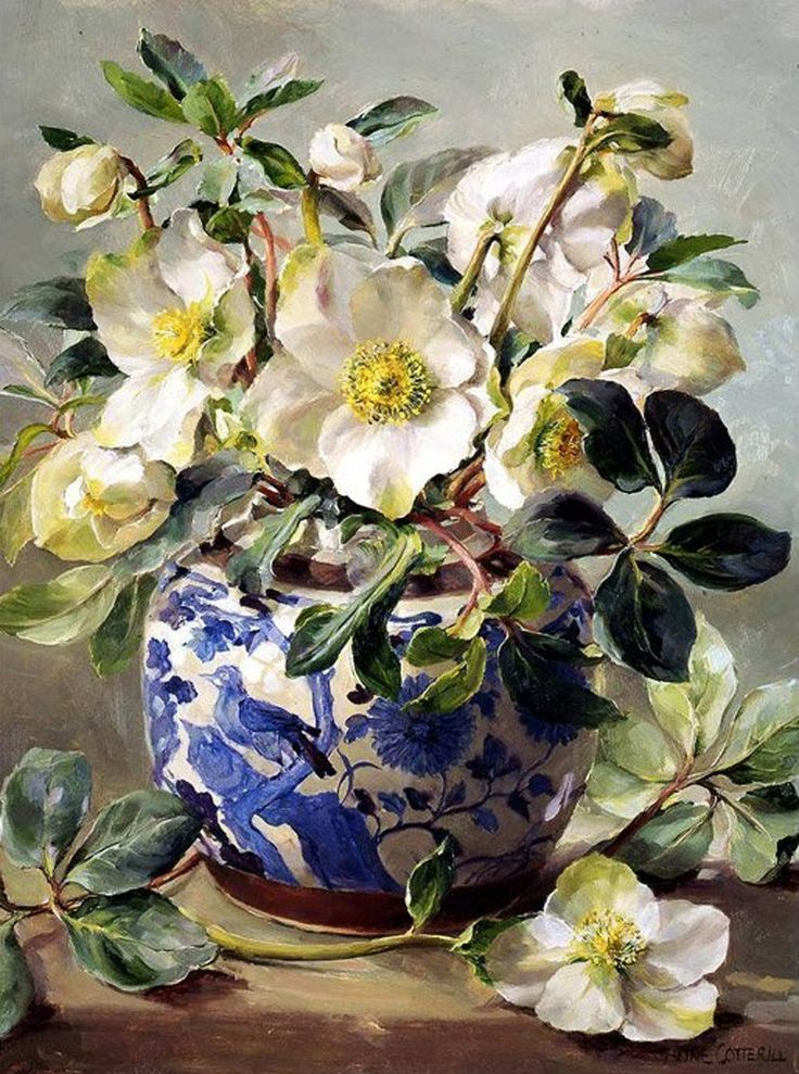 Anne Cotterill (British, 1933-2010) - White Hellebores in a Chinese Vase
