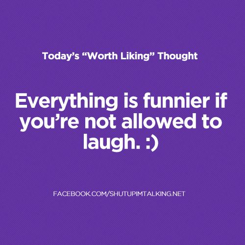 So True.Funny Things, Complete True, Church, Quotes Funny Pictures, Cant Laugh, Funny Stuff, So True, Absolute Truths, True Stories