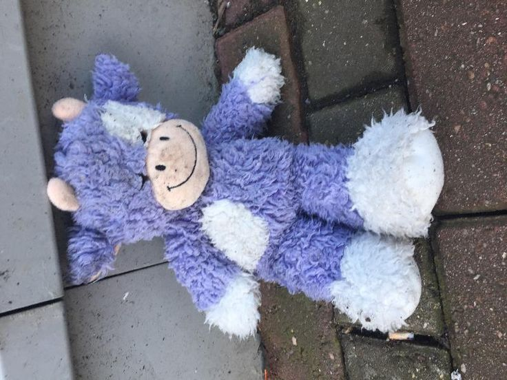 Found on 06 Apr. 2016 @ Leigh Delamare East Motorway Services. Found slightly wet, bit dirty and face down in the car park but still smiling at 7pm. Didn't look like he'd been there all day. Visit: https://whiteboomerang.com/lostteddy/msg/xz2cea (Posted by Liz on 06 Apr. 2016)