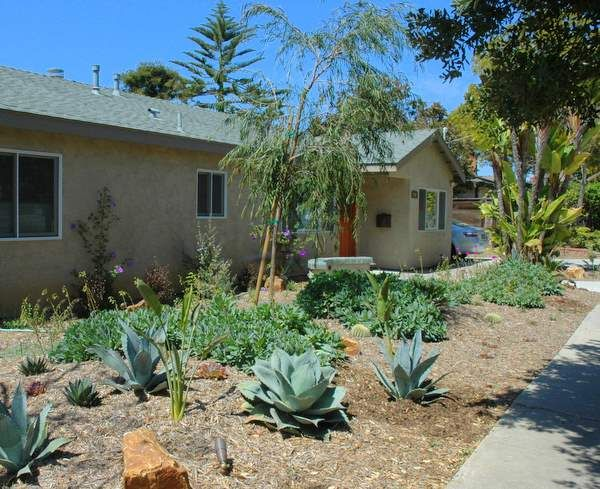 Xeriscape Front Yard Yes With The Succulents Dream