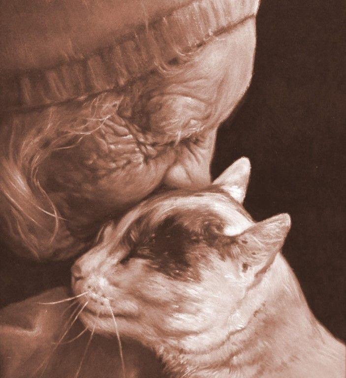 Картинка бабушка и коты