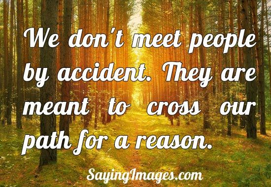 You Meet Someone For A Reason Quotes: We Meet People For A Reason Quotes. QuotesGram