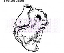 """Plotter Datei """"anatomisches Herz"""""""