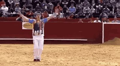 21 Best GIFs Of All Time Of The Week #127 from best GOAT and Best of the Web