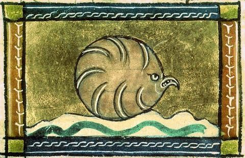 Not another Angry Bird. In the mind of a medieval illuminator, this is an oyster. (Middle Ages on Mahable. Cool.)