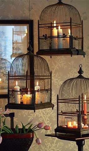 New life for old bird cages! (Cottage House) More                                                                                                                                                                                 More