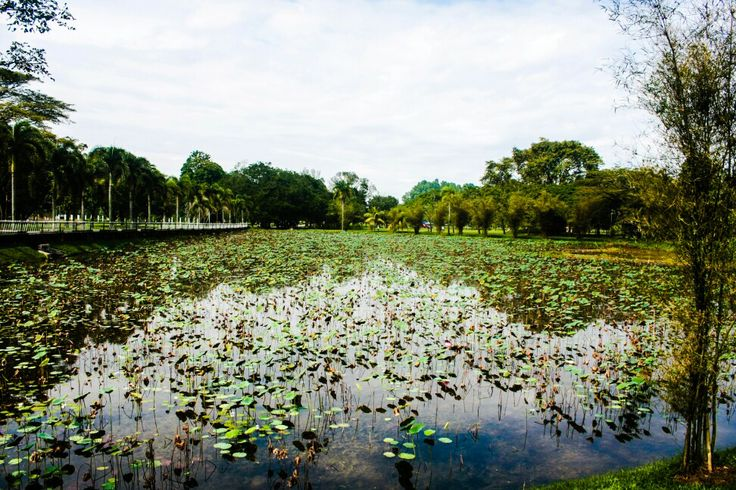 Lakeside at a memorial park