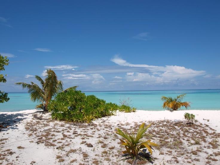 Kombireise Malediven  http://www.kombireise.eu/indischer-ozean/malediven/sun-island-resort  Kombiniere Sun Island und Dubai, Abu Dhabi und Malediven, Sri Lanka und Malediven und/oder Beachbungalow und Wasserbungalow.