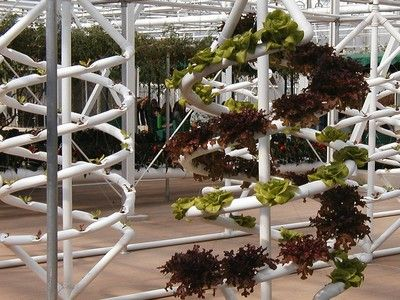 12 Plug And Play Home Hydroponics Systems    This Includes The TOWER GARDEN