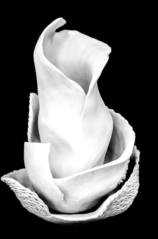 ceramika KWIAT PAPROCI by agakubish