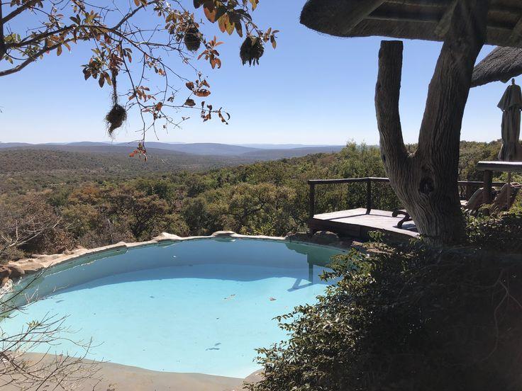 Nedile Lodge Game Reserve Welgevonden South Africa Afrika Zuid Afrika Mauritius