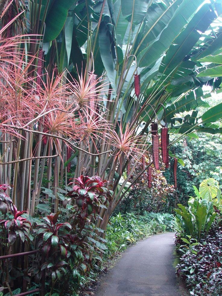 Earthly Nirvana, Hawaii Tropical Botanical Garden, Papaikou, The Big Island  - CountryLiving.com