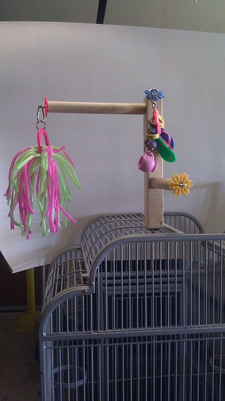 Topper for the cage - Medium Toys - Crazy For Birds Toy Shop