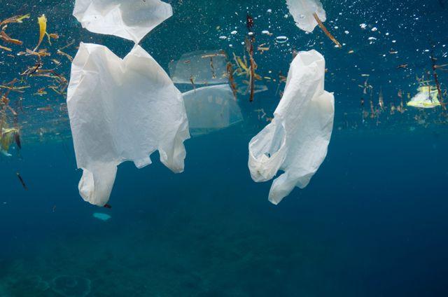 Milioni di tonnellate di plastica minacciano i nostri mari Sacchetti, bottiglie, posate, teli lacerati, pezzi di giocattoli, gli infiniti oggetti della vita quotidiana. Oppure imballaggi, pezzi di reti da pesca. Una enorme massa di rifiuti, soprattutto di plastica è un pericolo mortale per la vita marina. Leggi