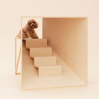 昨年のデザイン・マイアミで発表された「犬のための建築」。気鋭の建築家&デザイナーが犬種ごとに設計。設計図は無料でダウンロードできる(  http://architecturefordogs.com  )。 こちらは原研哉×ティーカップ・プードル。  【Casa Brutus編集長 松原亨】  http://lexus.jp/cp/10editors/contents/casabrutus/index.html  ※掲載写真の権利及び管理責任は各編集部にあります。LEXUS pinterestに投稿されたコメントは、LEXUSの基準により取り下げる場合があります。