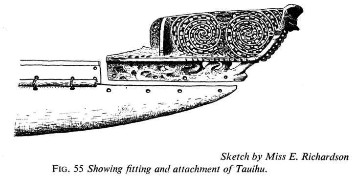 Attachment of Tauihu