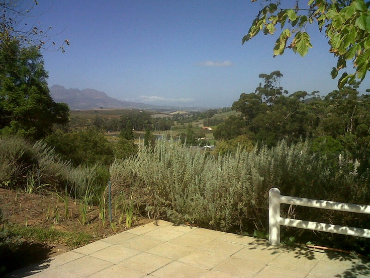 The view from Terrace @ Devon Valley Hotel...