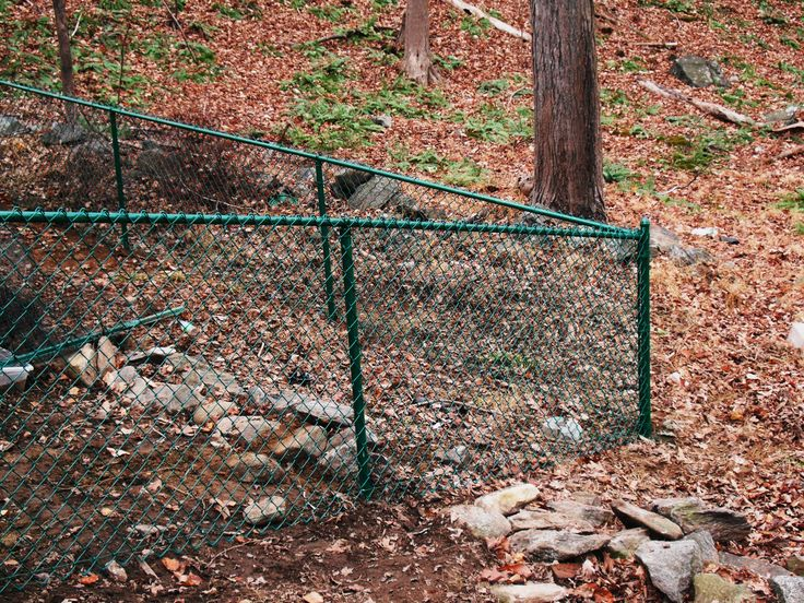 39 Best Chain Link Residential Images On Pinterest