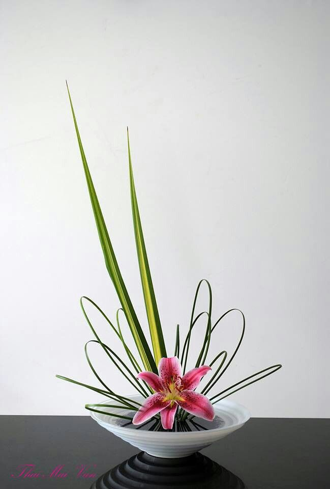 #flower arrangement ... Ikebana ... lily with looped leaves and a couple spiked leaves ... #design