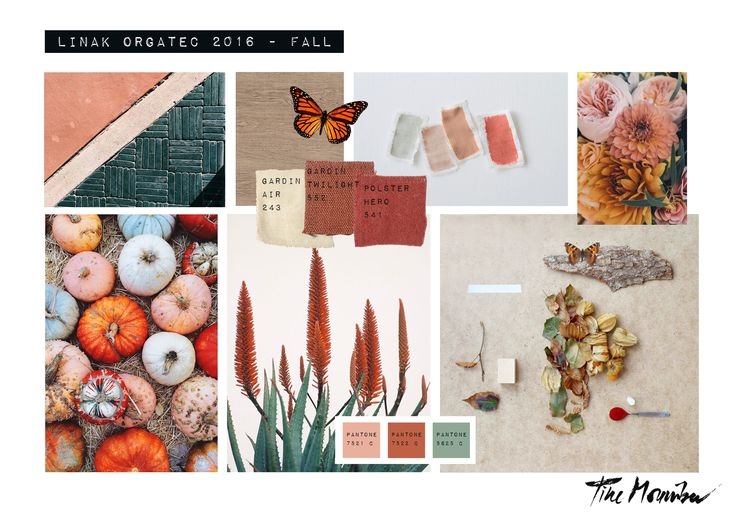 Seasons are changing and fall is here. The weather may be getting greyer, but the colors of fall are amazing. Take a look at this mood board @tinemouritsendk made for us in connection with our participation at @orgatec in October – nothing grey about that #designmeetsmovement #linakexhibition #movingsisliving #greenliving #inspiration