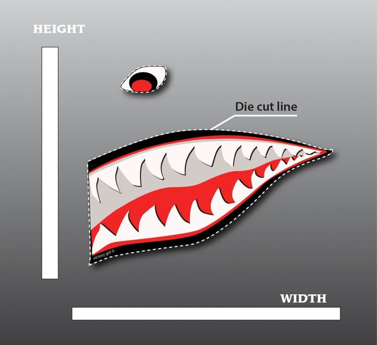 Shark Mouth Graphic Shark Teeth Nose Art The Malicious