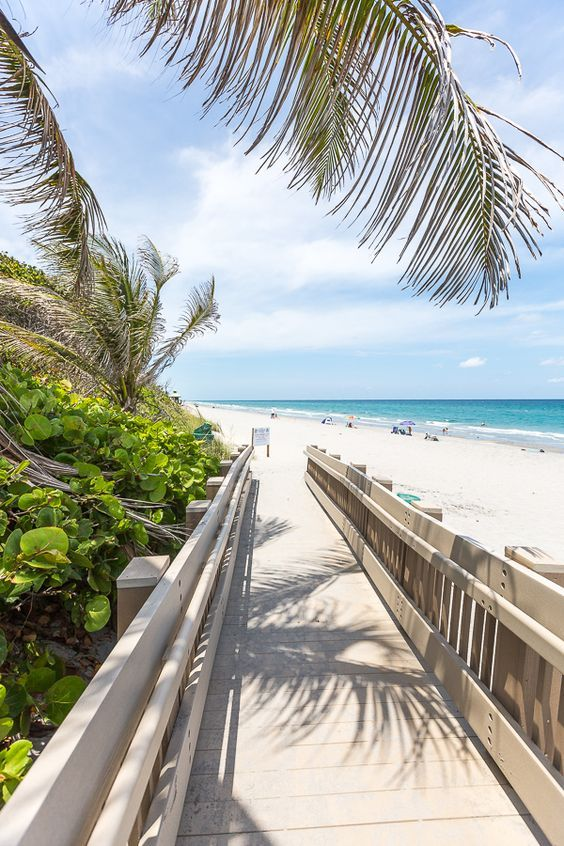 It's always a good day to be at Red Reef Park, Boca Raton, Florida