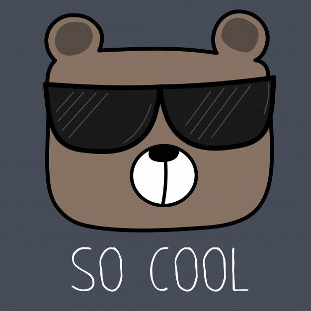 Cool Bear With Sunglasses. (มีรูปภาพ) | หมี