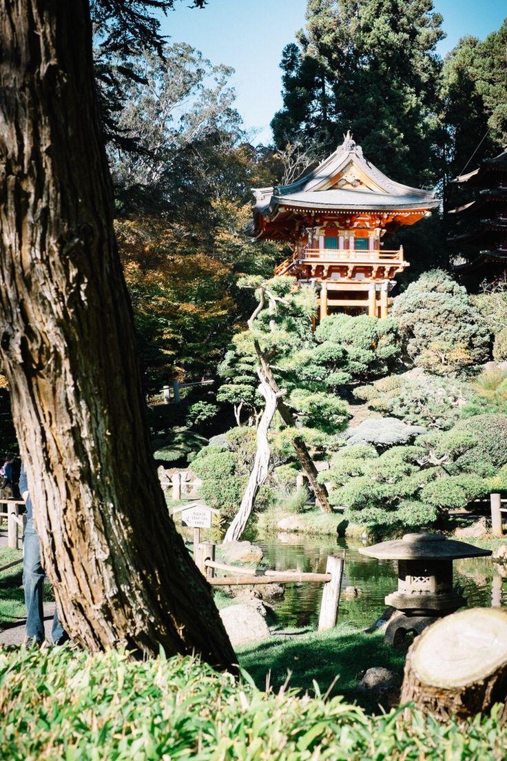 Japanese Tea Garden   sebastian   VSCO Journal