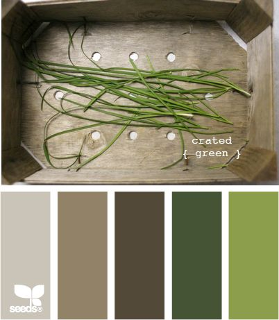 crated green: Kitchens Colors, Living Rooms, Design Seeds, Green Colors Schemes, Living Room Colors, Crates Green, Green Colors Palettes, Rooms Colors, Colors Inspiration